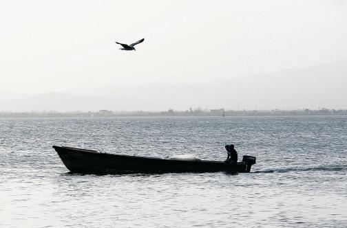 vissers Suriname