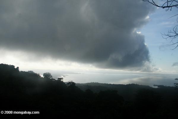 weer regen Suriname FamilieNieuws
