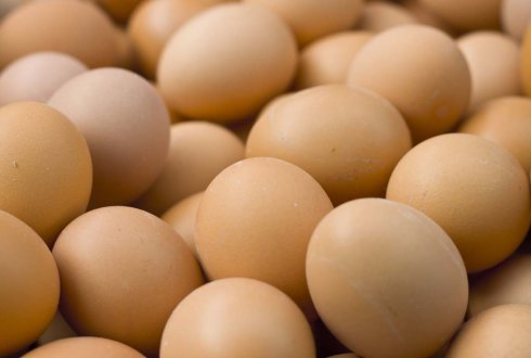 eieren Suriname
