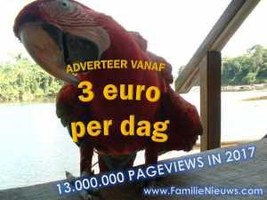 Adverteer voor 3 euro per dag bij FamilieNieuws