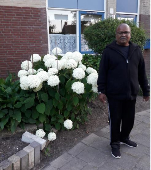 overleden Amsterdam