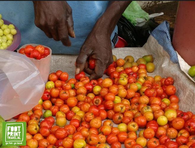 kersen Suriname