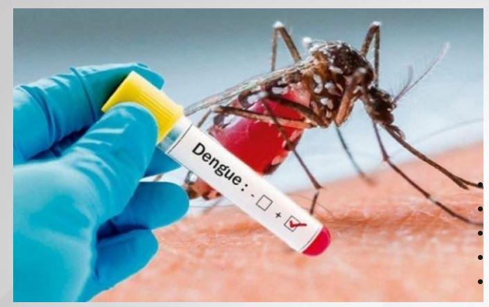 dengue Suriname