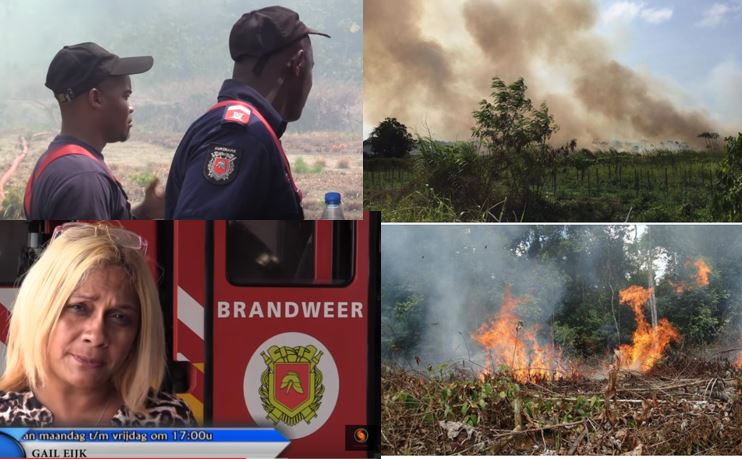 brand Suriname brandweer