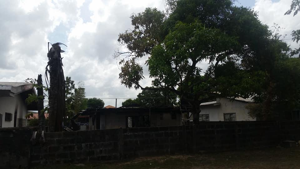 brand Paramaribo