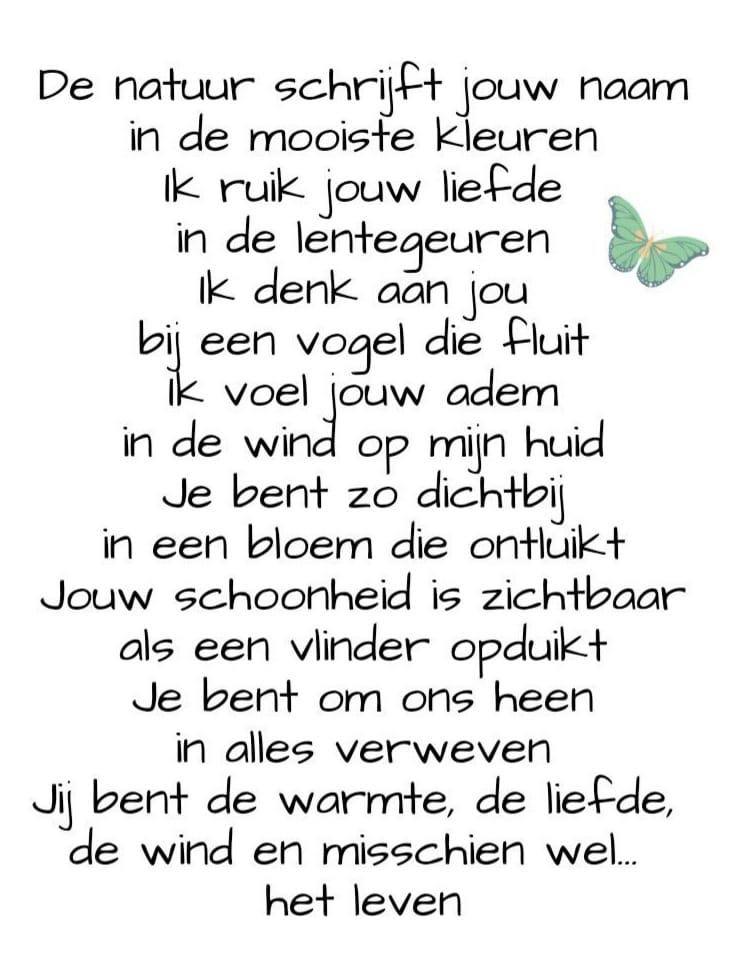 Windt Nederland
