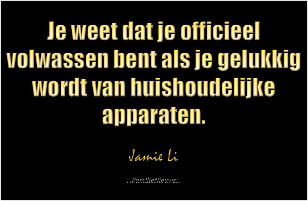 Quote van Jamie Li - Je weet dat je officieel volwassen bent als je gelukkig wordt van huishoudelijke apparaten