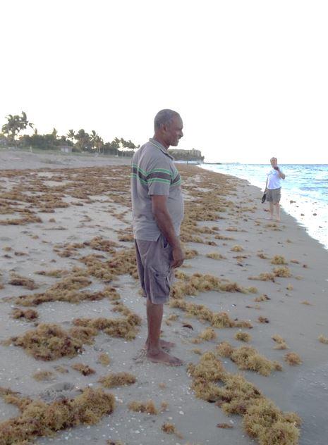 Wortel Domburg Suriname voetballer 1